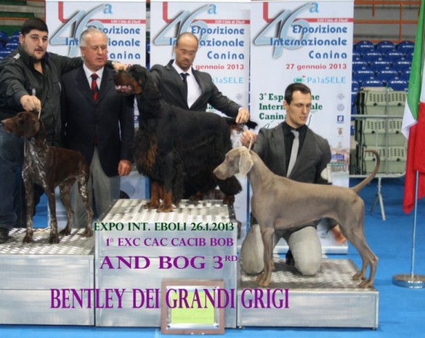 expo-int-avellino-2013