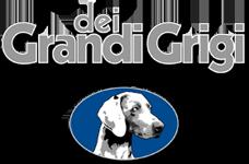 Logo-Dei-Grandi-Grigi-web